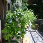 Pflanzgefäß Balkon