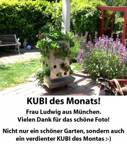 Foto Barbara Ludwig KUBI des Monats