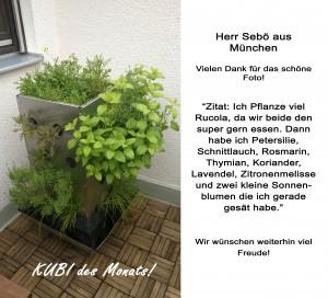 2015-10 KUBI des Monats Sebö München