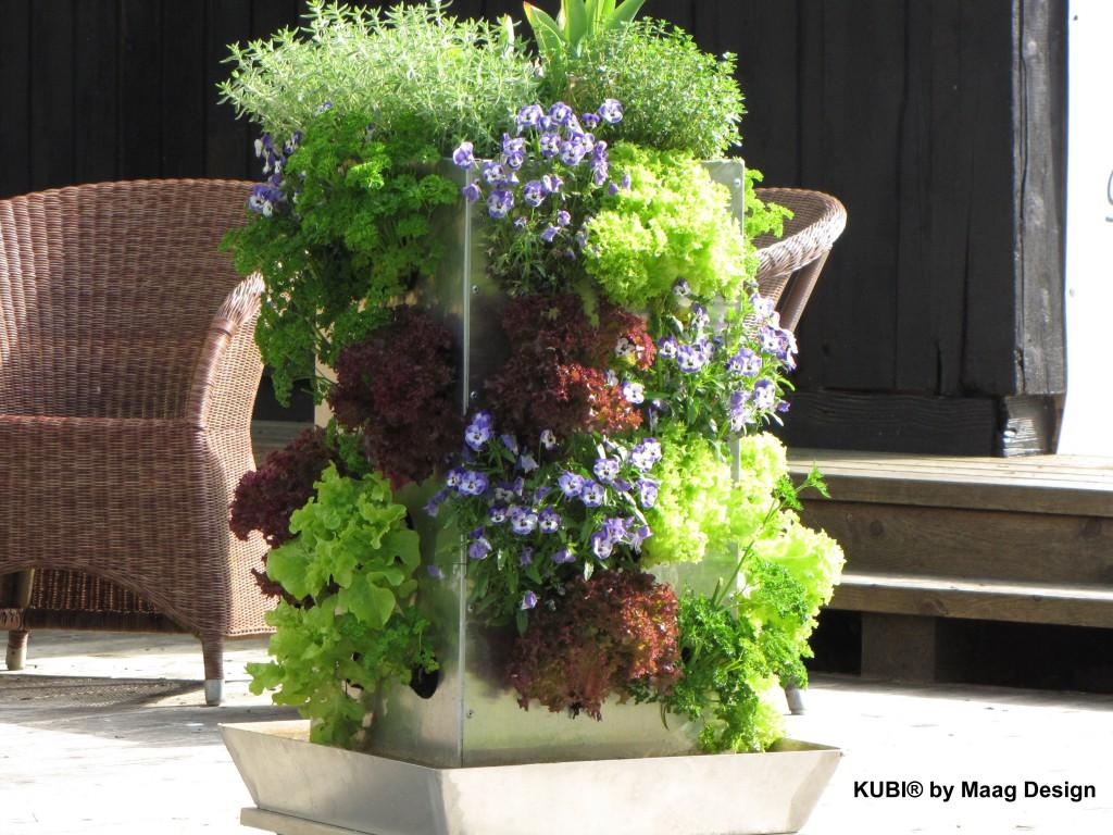 Vertical gardening, vertikales gärtnern