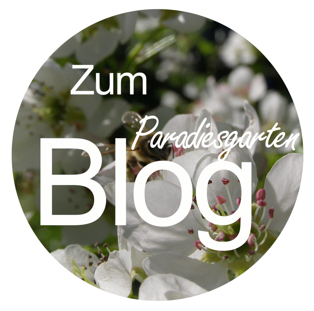 Paradiesgarten Blog