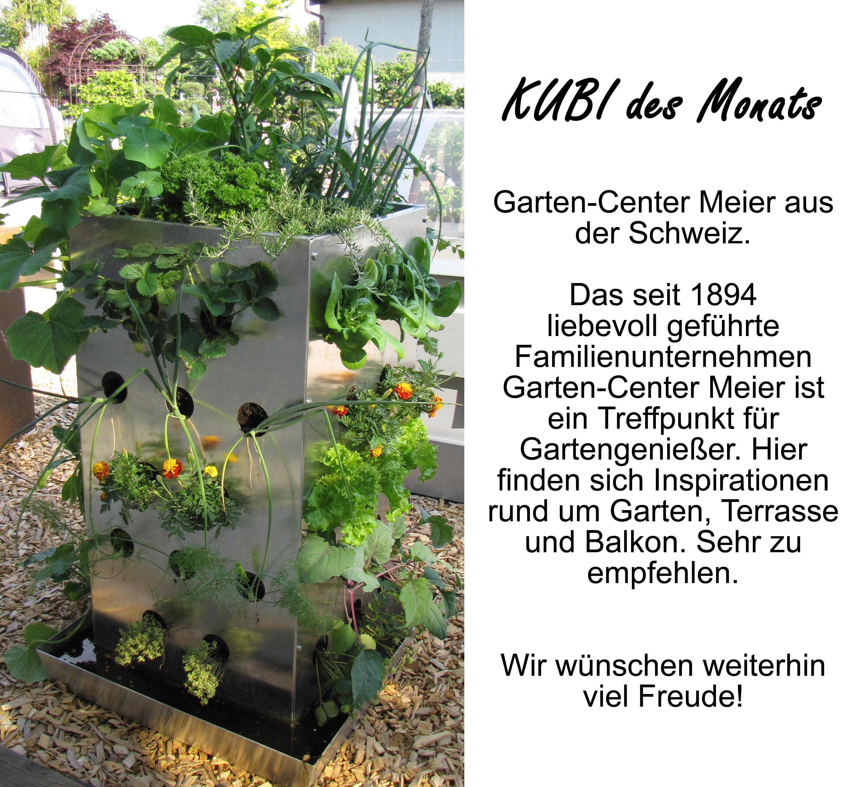 2016-02 KUBI des Monats Meier