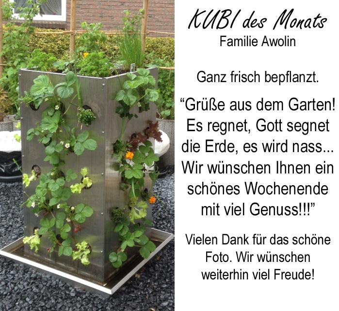 KUBI frisch bepflanzt Juni