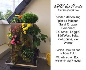 2017-07- KUBI des Monats Familie Gorsitzke