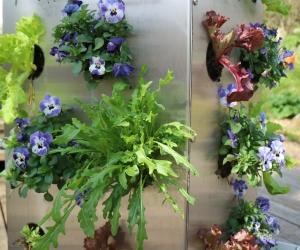 plastikfrei veritkal gärtnern