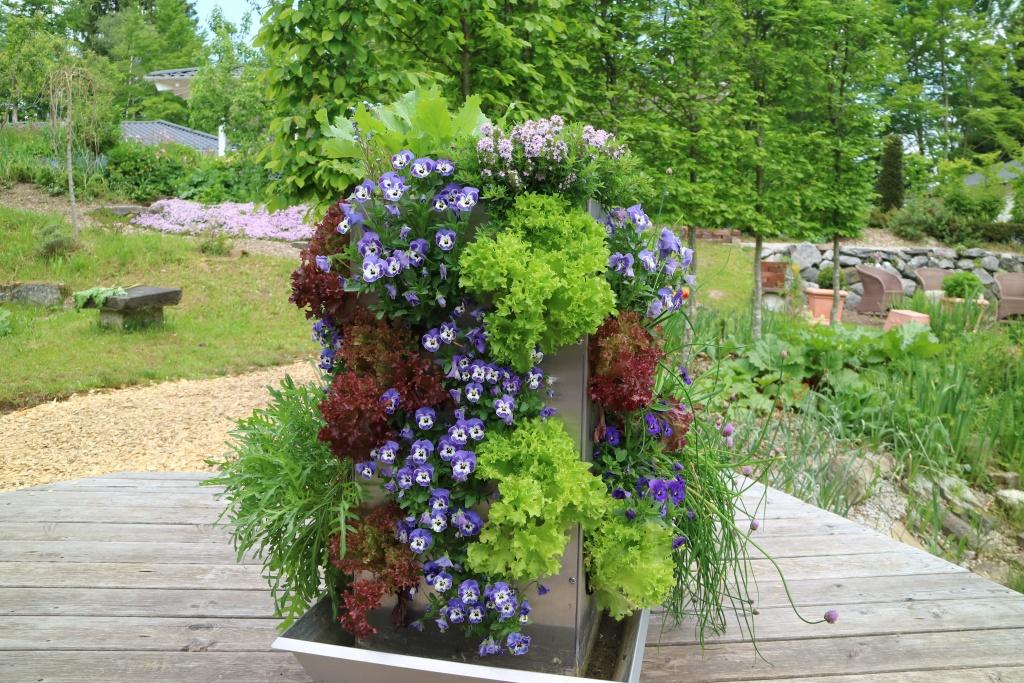 Platzsparendes Gemüsebeet