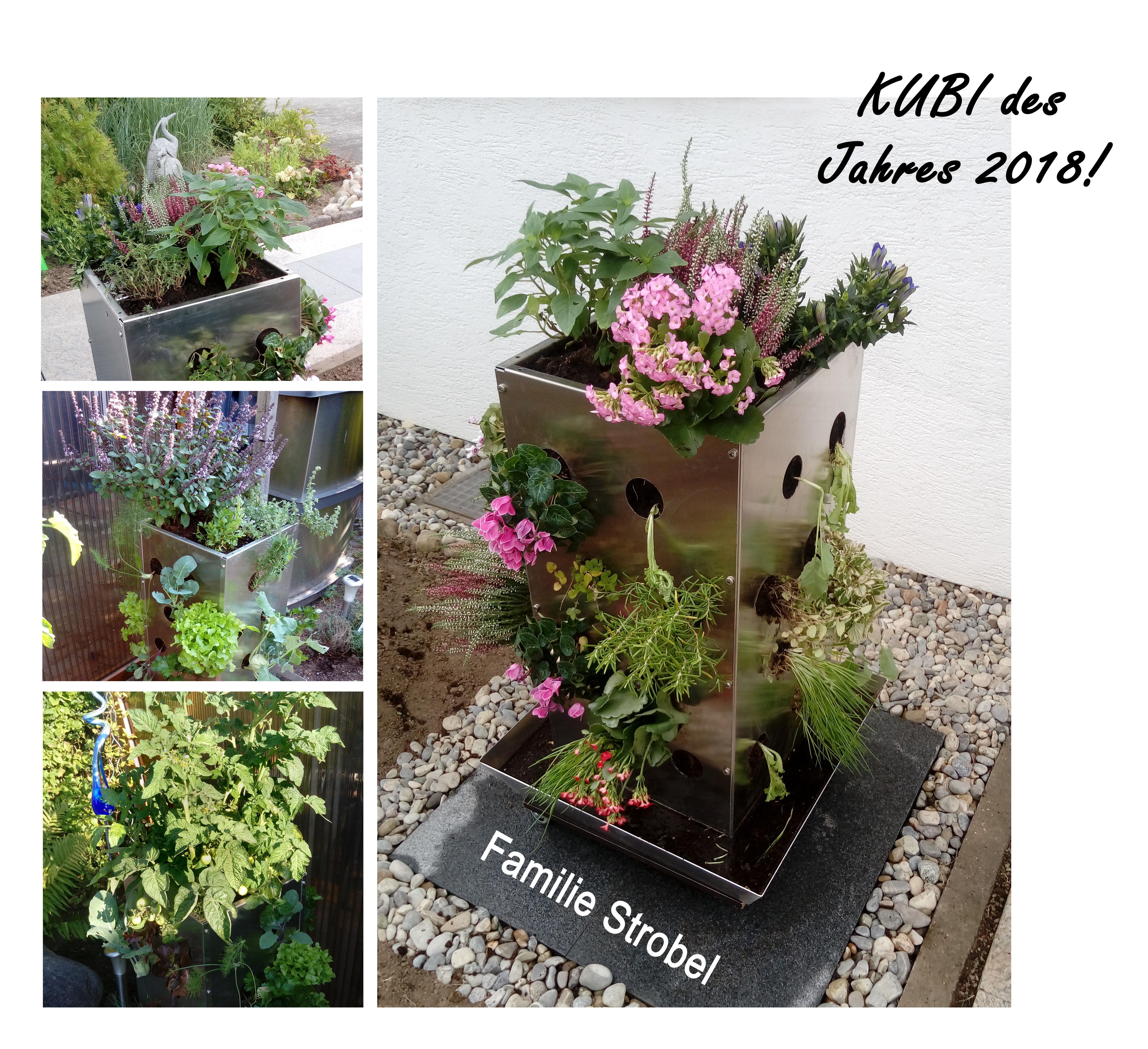 2018 KUBI des Jahres Familie Strobel